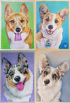 Pastel commission - Unleash the corgis!