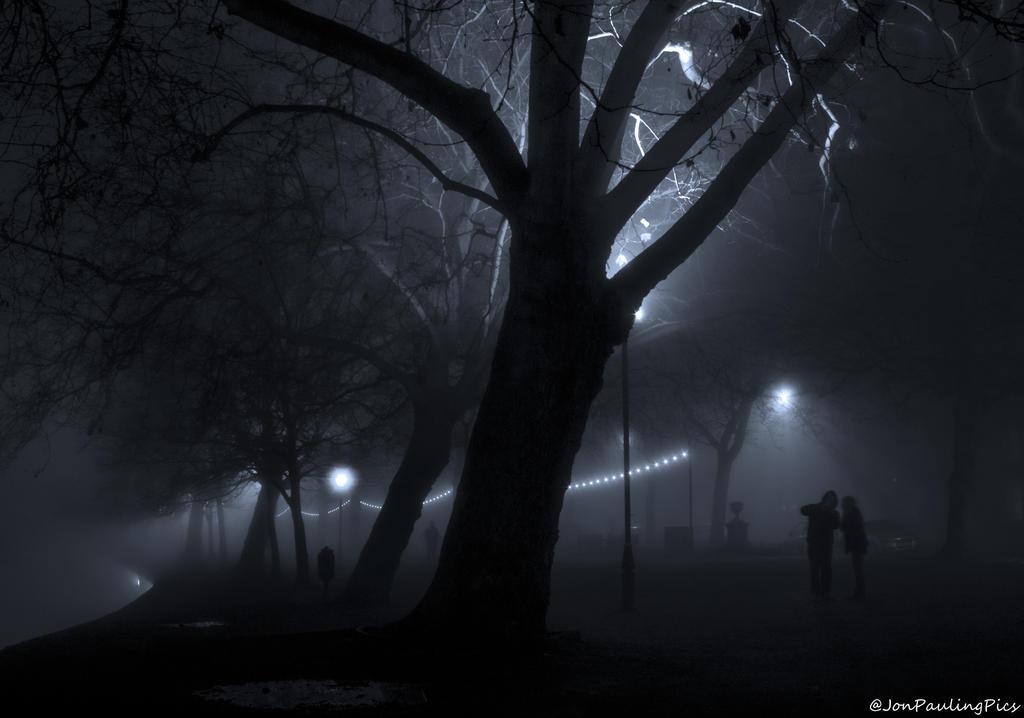 Fog Bound Embankment by Mincingyoda