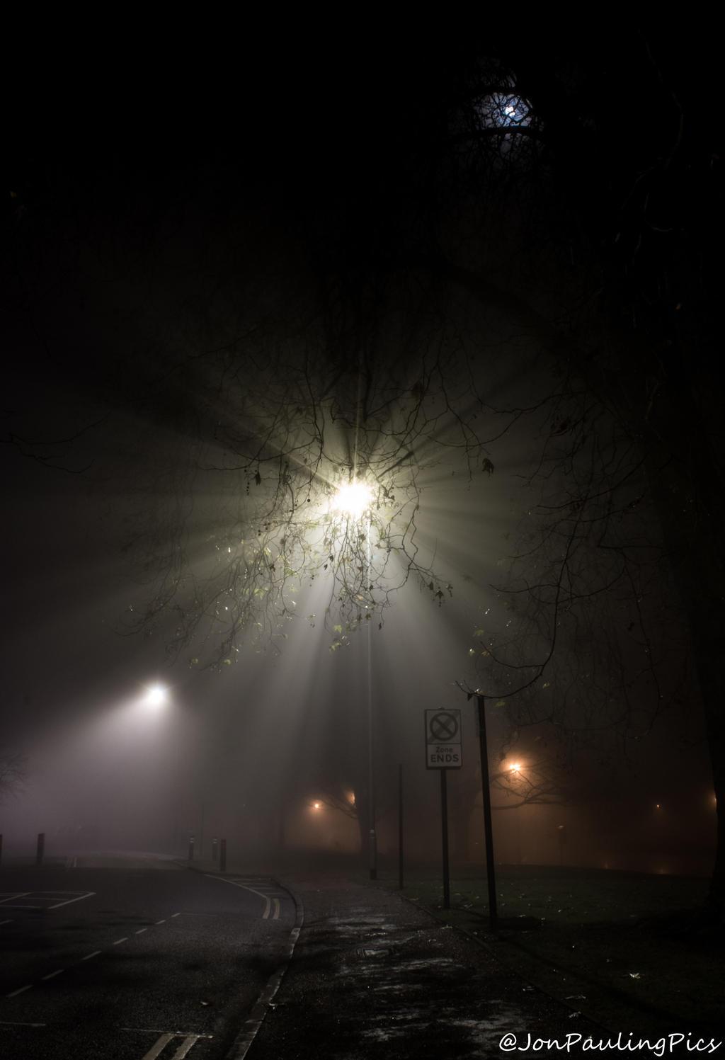 Foggy Fun by Mincingyoda