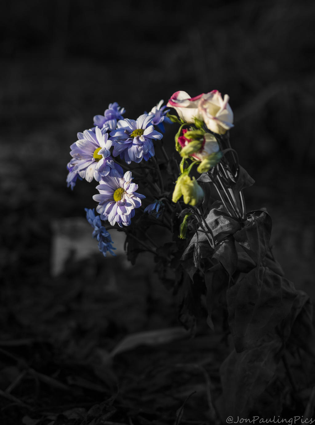 Fading Away by Mincingyoda