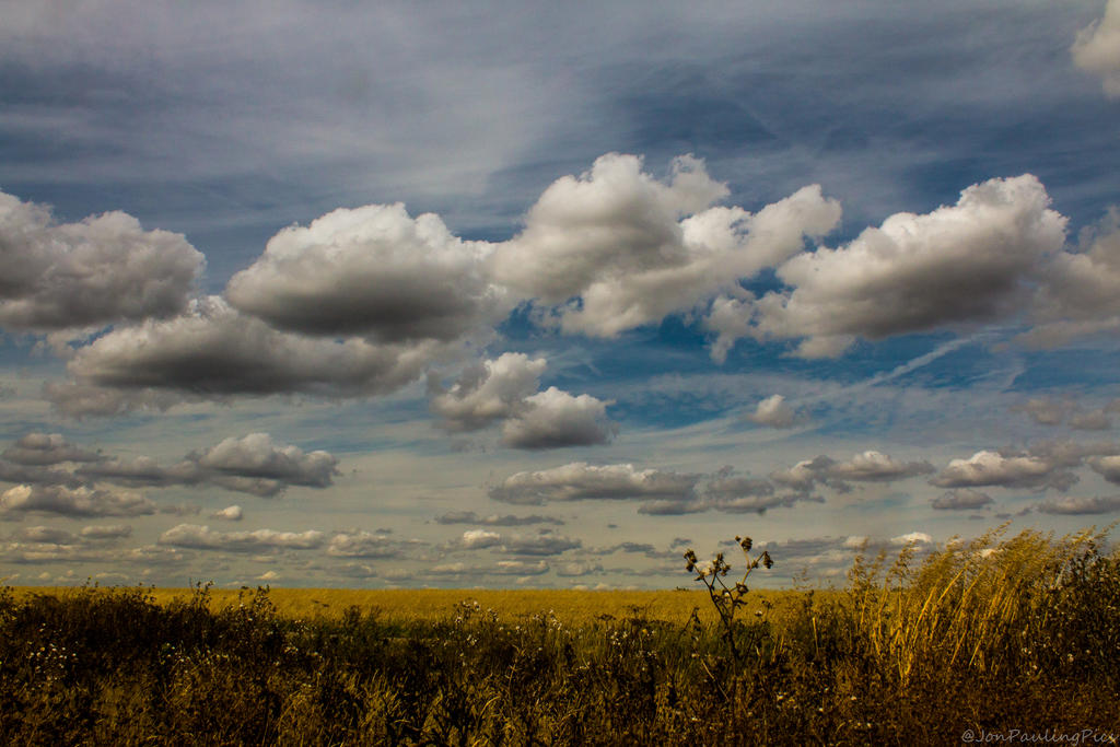 Field of clouds by Mincingyoda