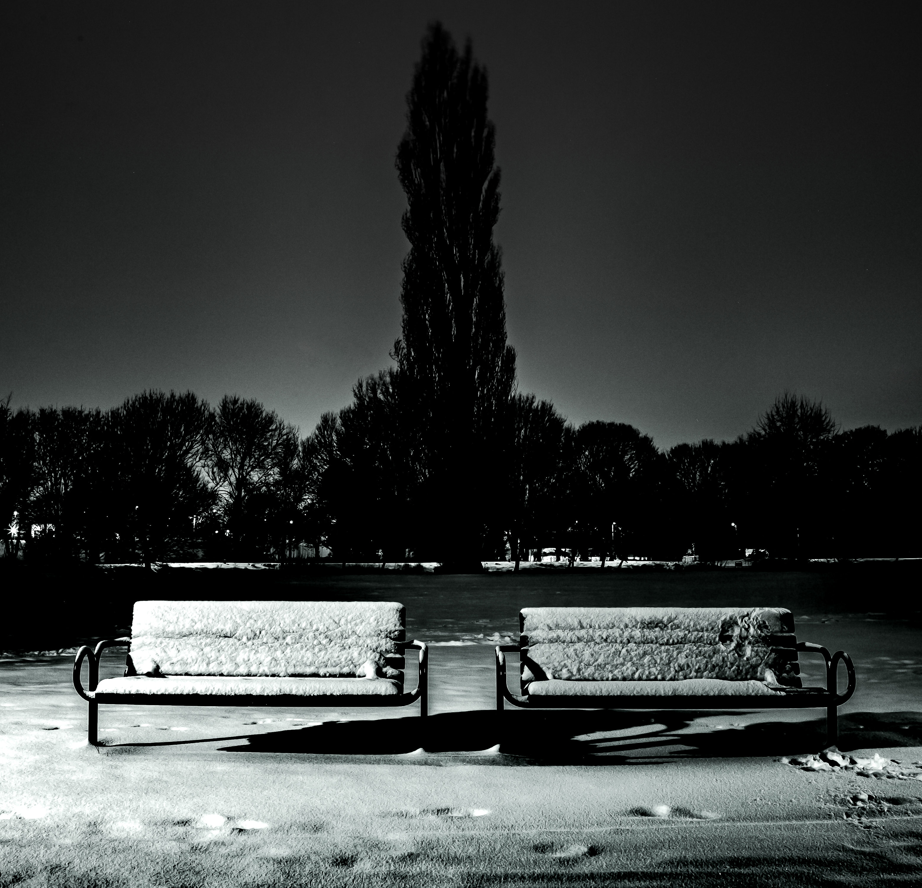 Snowy Benches by Mincingyoda