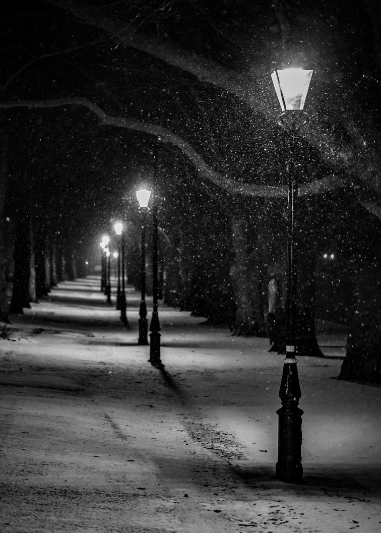 Winter Wonderland Wander! by Mincingyoda
