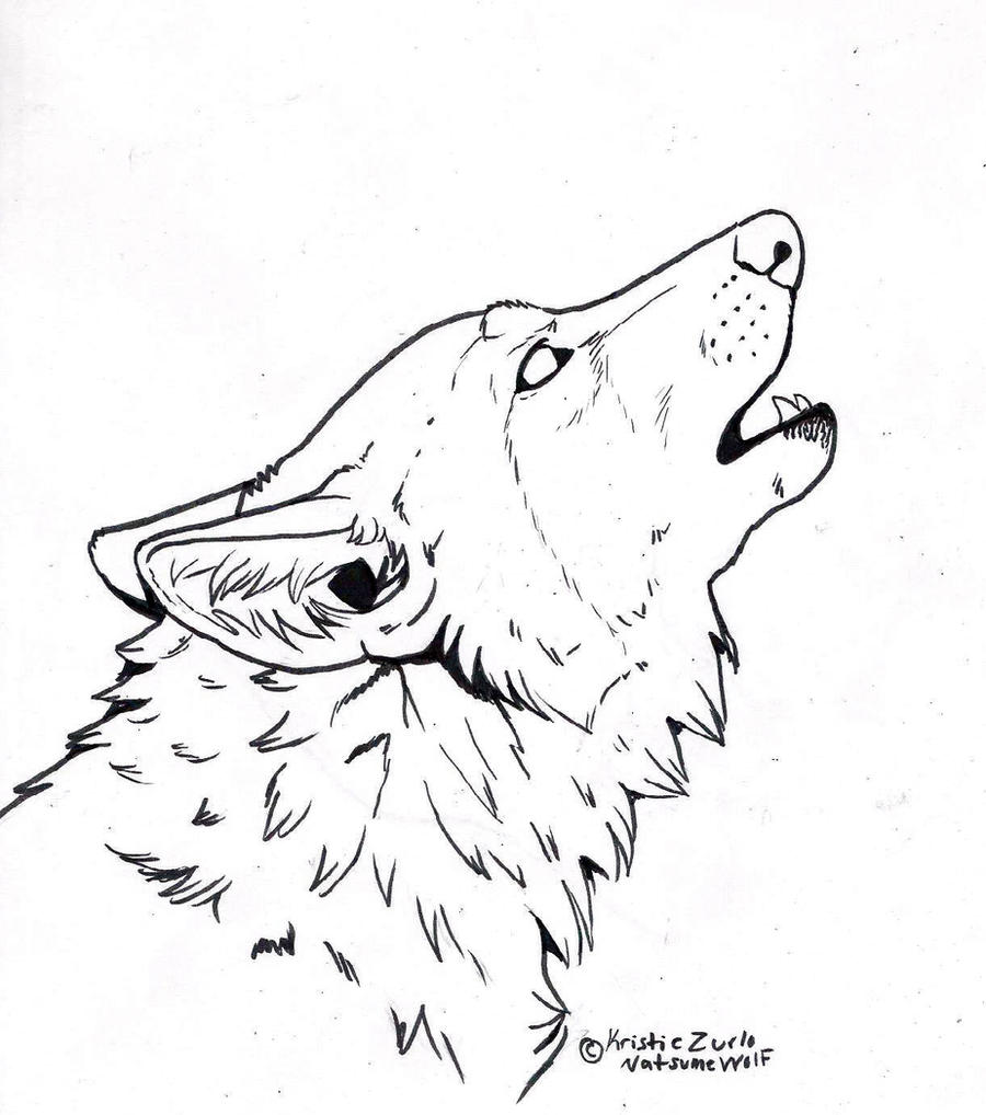 Free Line Art : Sketches of wolves coloring pages