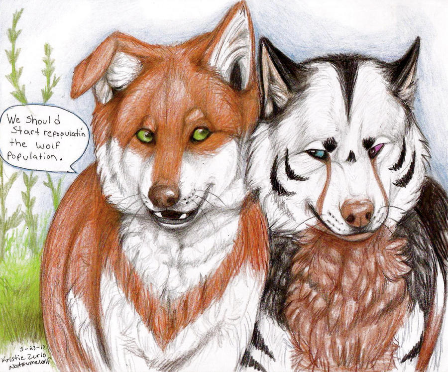 .. Wolf Repopulation .. by NatsumeWolf on DeviantArt