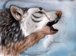 .... Last Howl .....
