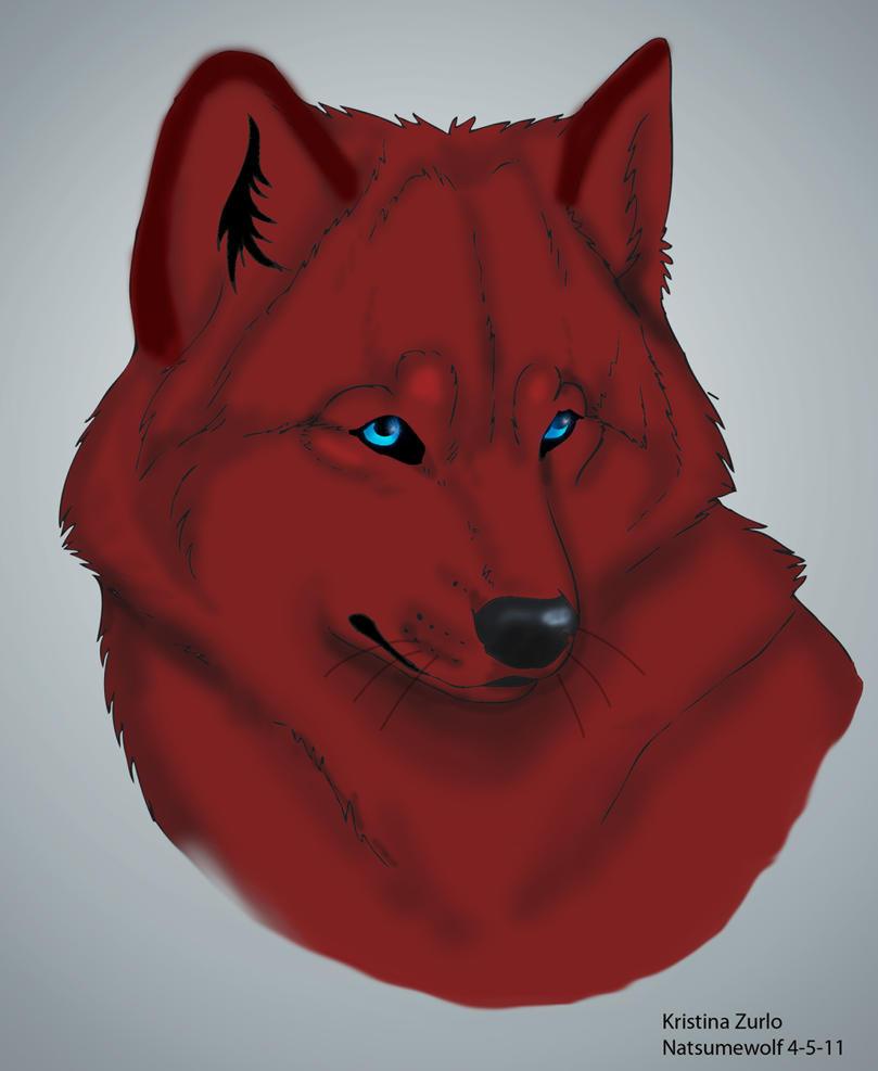 drecka red wolf by natsumewolf on deviantart