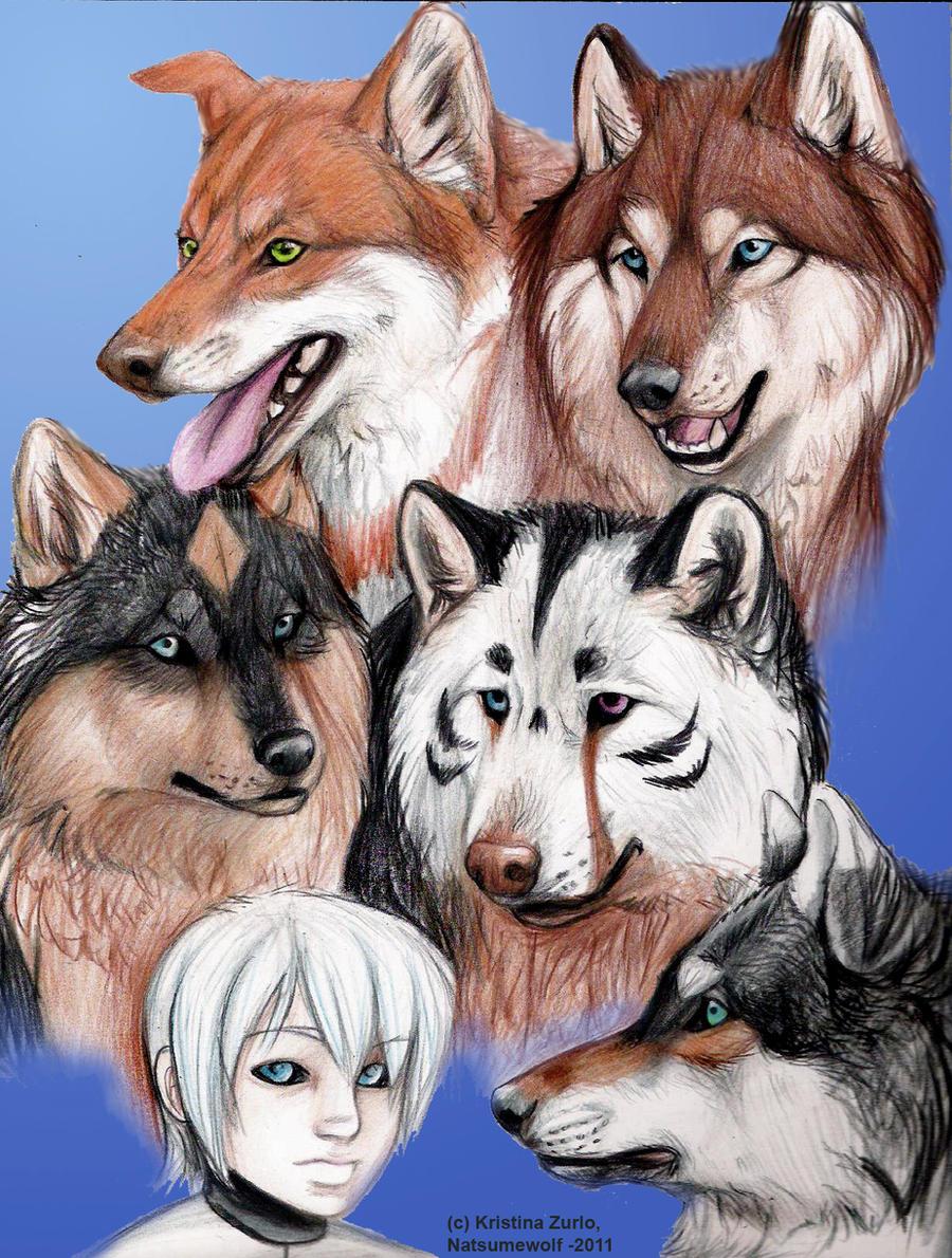 Wolf's Rain NG Gang by NatsumeWolf