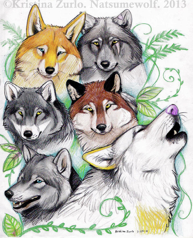 The Pack by NatsumeWolf