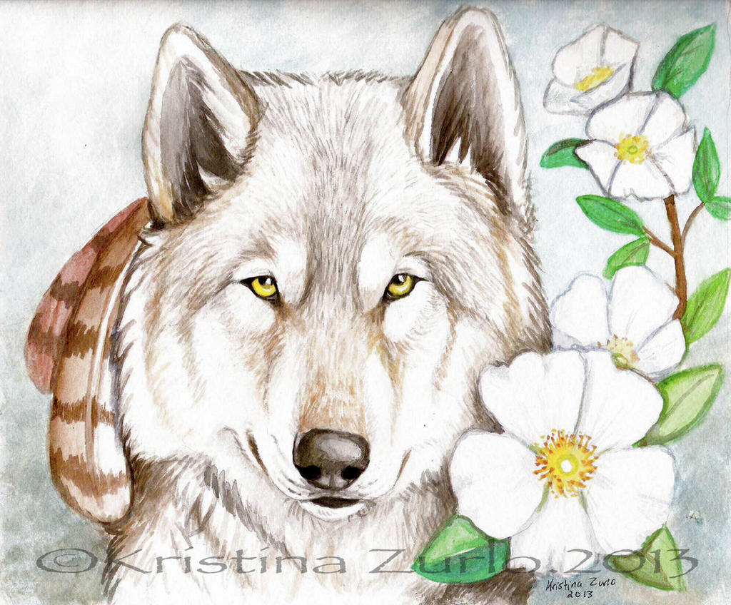 Cherokee Rose by NatsumeWolf