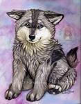 Kalik Puppy
