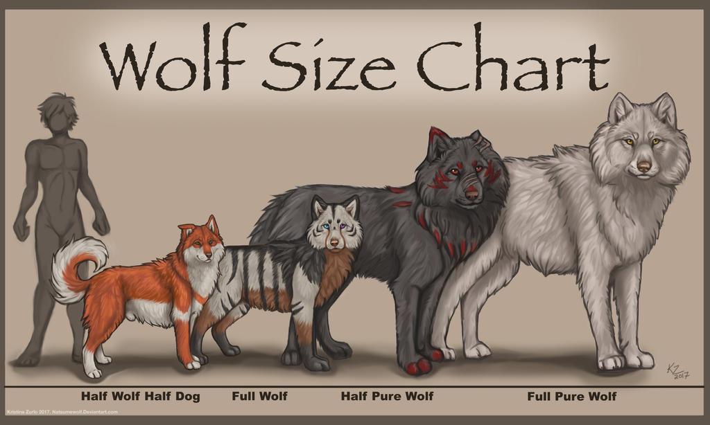 wolf vs dog size chart