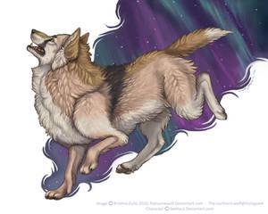 Seehara Wolf
