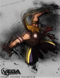 Street Fighter Vega by ryaniumspec