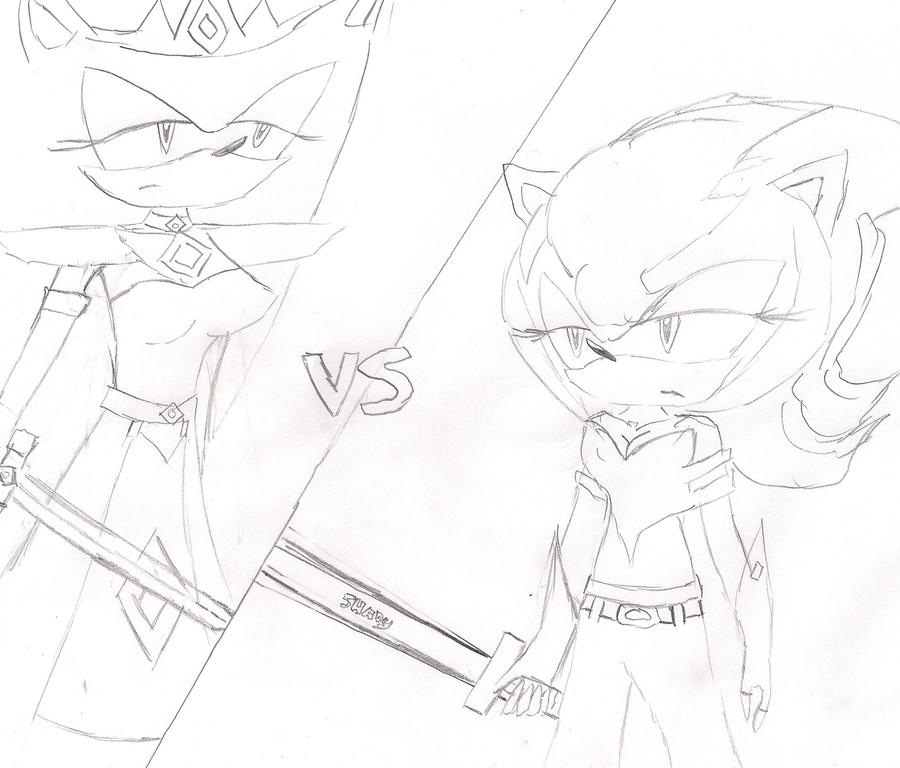 Sira VS Shady Part 1 by sira-the-hedgehog
