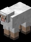 sheep -decor-