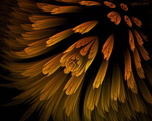 FLEUR DE MON JARDIN 2 by BELLESYMPHORINE