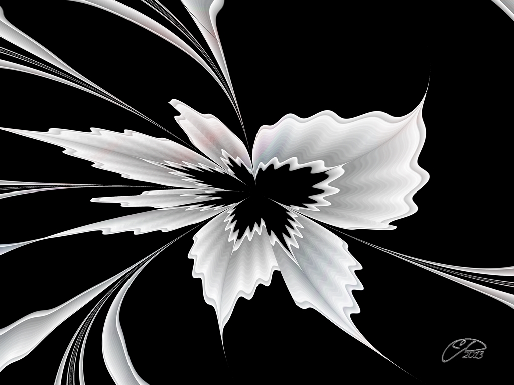 Decor floral 4 by bellesymphorine on deviantart Fleur noir et blanc