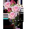 Blogchezzaza123187498141 Gros By Bellesymp by BELLESYMPHORINE