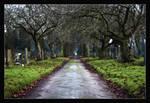 A walk through the graveyard.