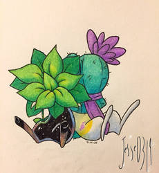 Pothos And Cactus