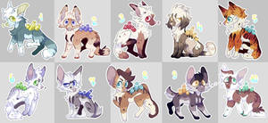 [Open] 8$/800 points Adopts