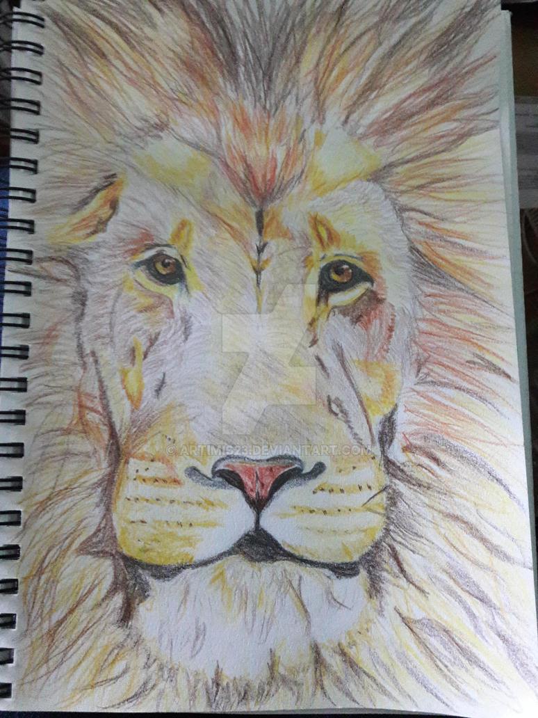 Lion by artimis23