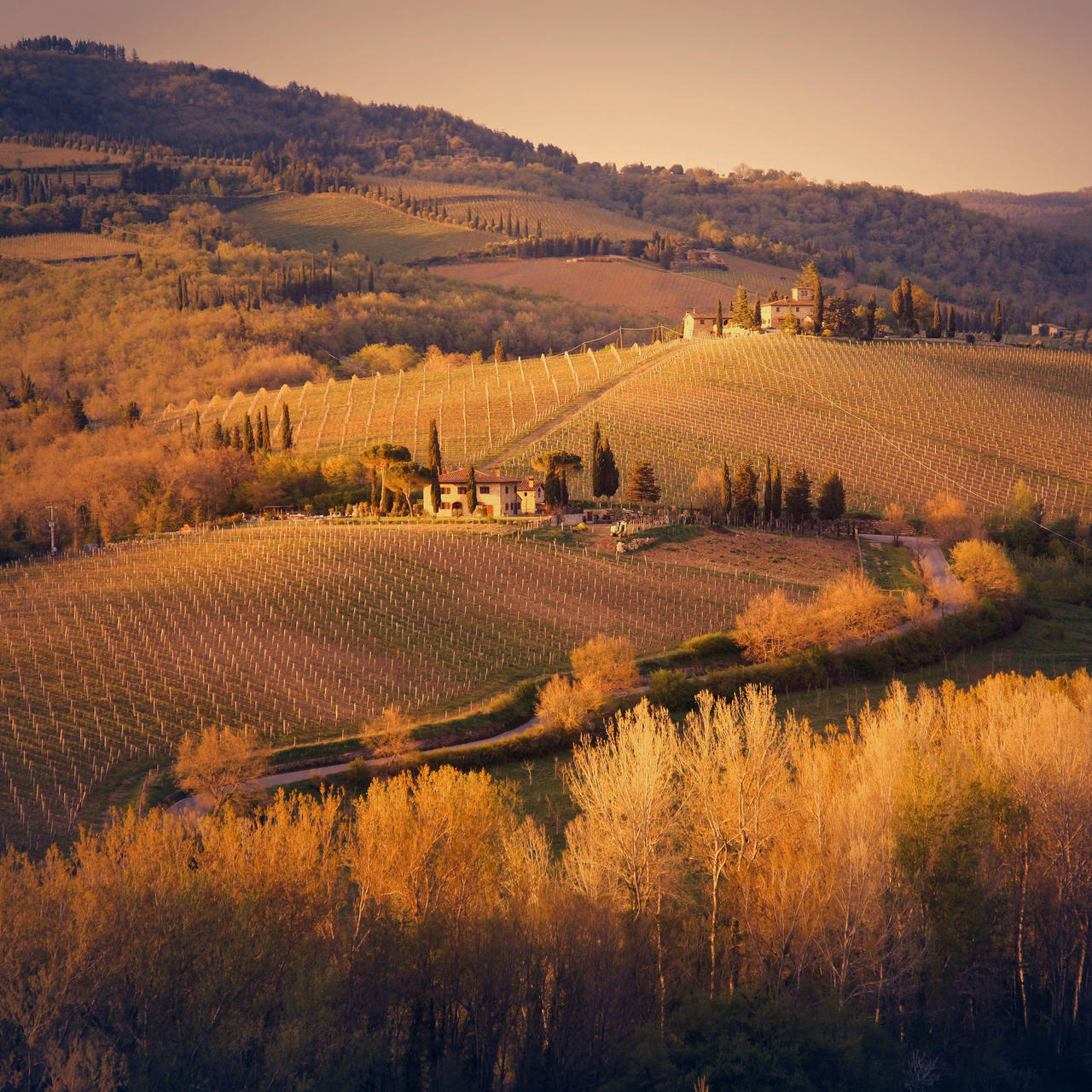 Goodnight, Tuscany. by cichutko