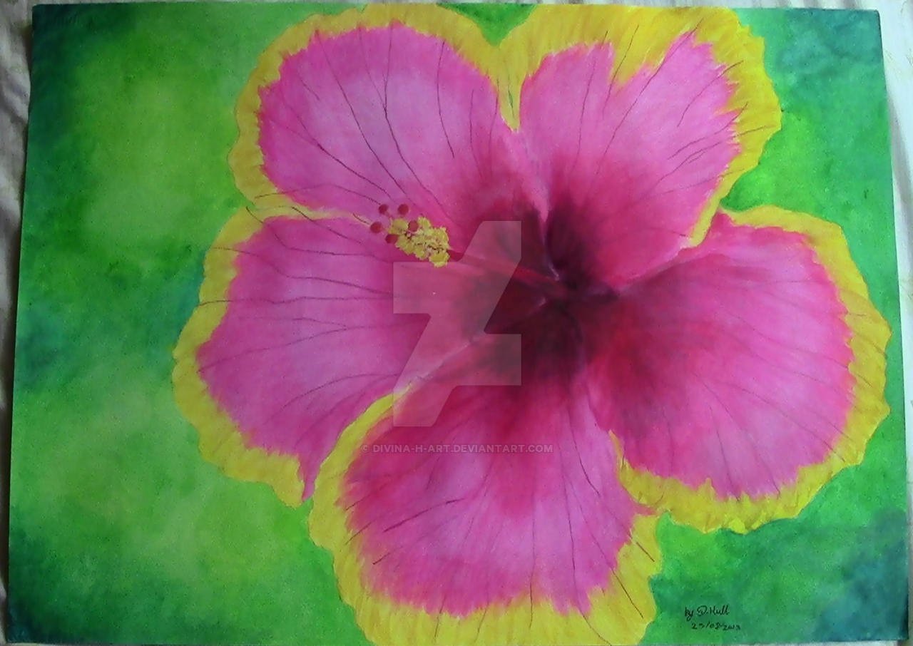 Pink And Yellow Hibiscus by Divina-H-ART