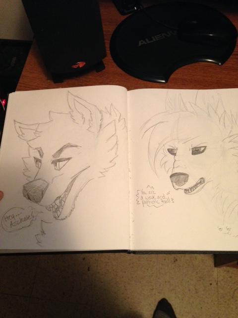 Re-draw #1 by kiecothewolf03