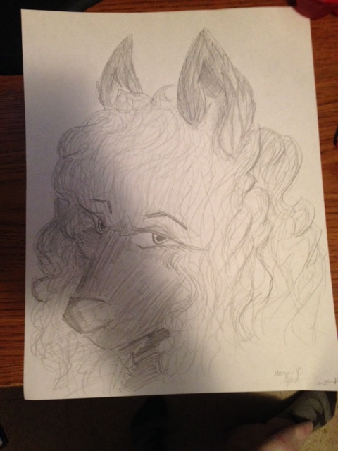 Newest Drawing by kiecothewolf03