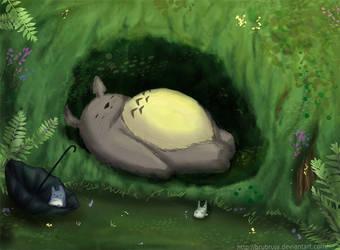 dream's totoro by Brubruja