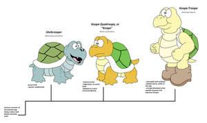 Evolution of Koopa Troopas