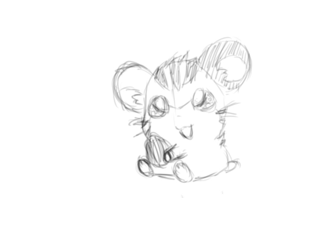 Hamster sketch by charlottezxz on DeviantArt