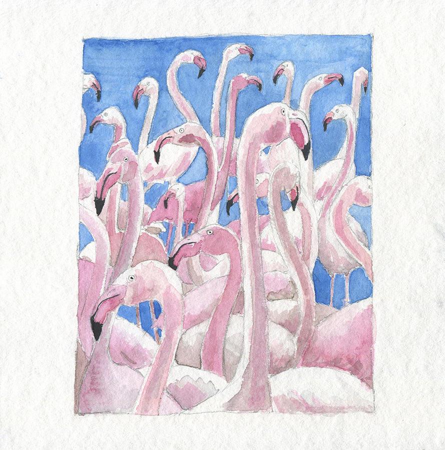 Flamingos at the lake by Divenadesign