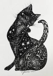 Cosmic Kitten