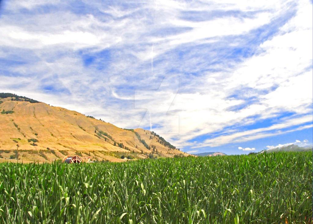 Vernon farm by BrianArnoldImaging