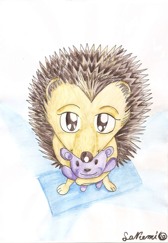 how to draw a baby porcupine