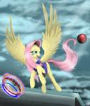Flutter Player