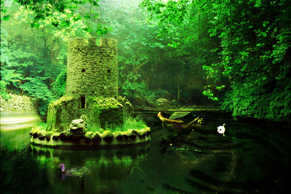 a fairy's dwelling