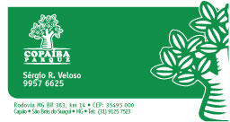 copaiba bussiness card by thedsw