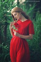 Rose whisperer II by antoanette