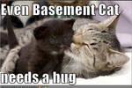 Everyone needs a hug...