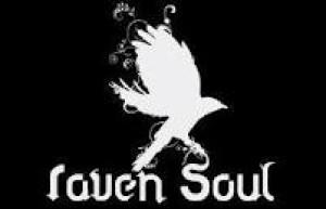 The-Raven-Soul's Profile Picture