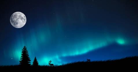 Aurora Borealis by s3vendays