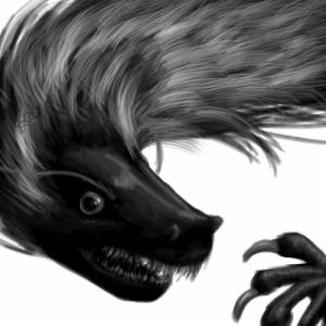 Falvrag's Profile Picture