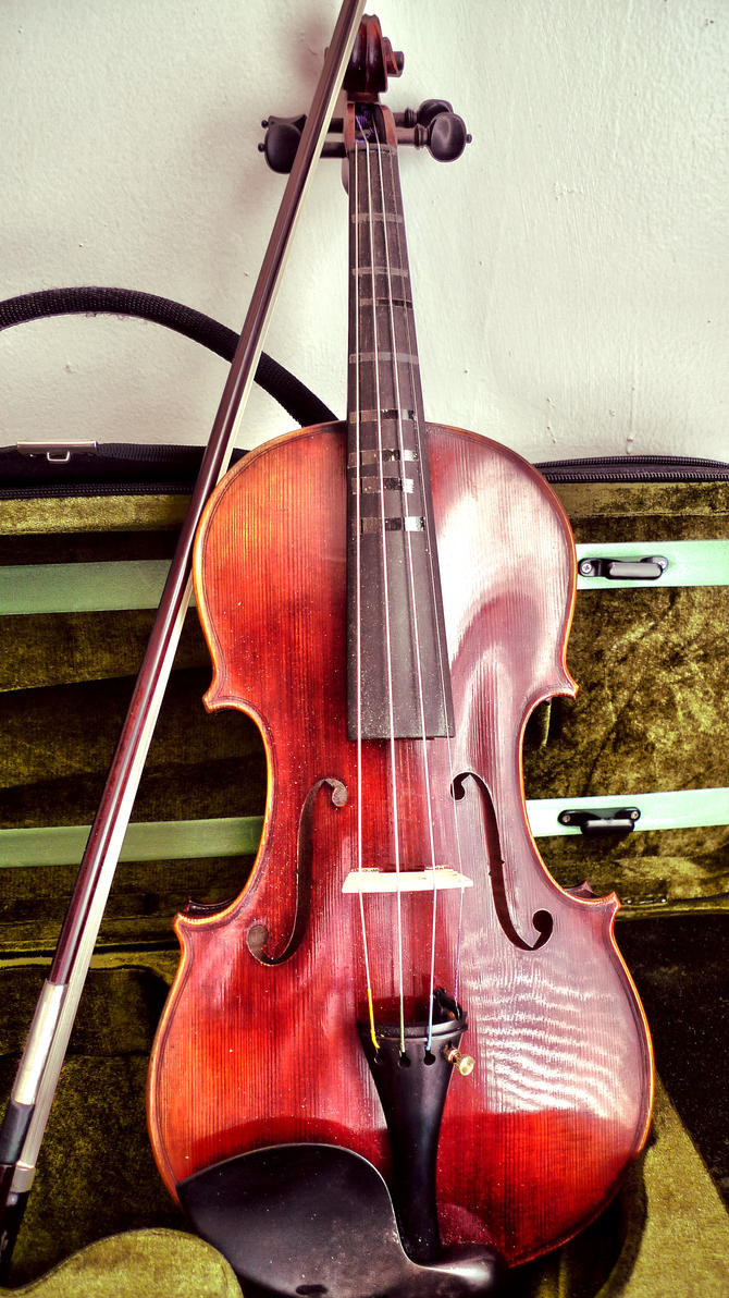 stradivarius wallpaper - photo #6