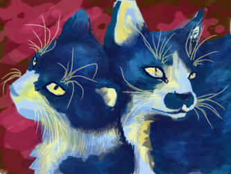 Kitten Cuddles 2 by ZutaraMushroom