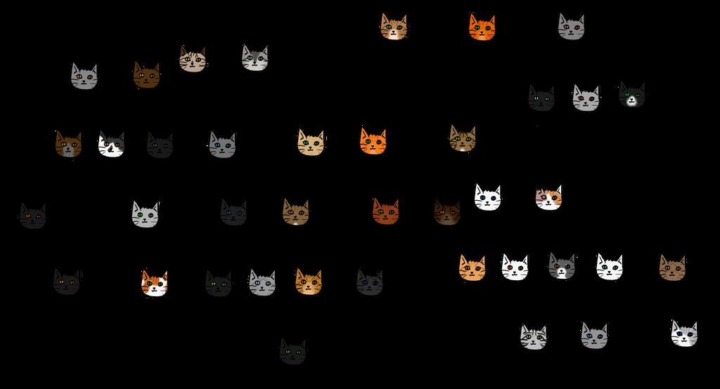 what do kittens eat
