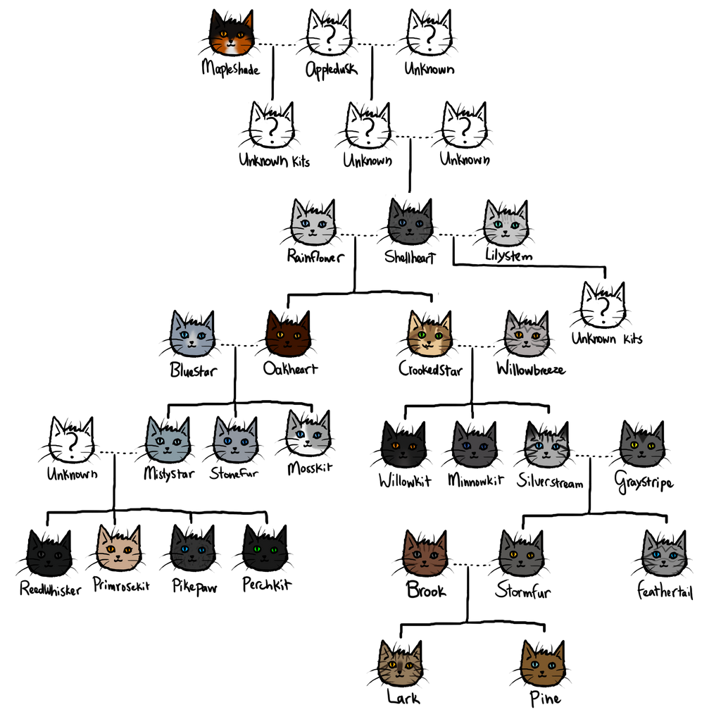 Warriors Dawn Of The Clans Characters: Warrior Cats Graystripes Family Tree